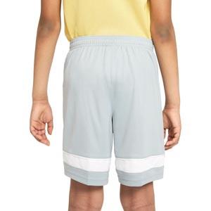 Short Nike Dri-Fit Academy 21 niño - Pantalón corto de entrenamiento de fútbol infantil Nike - gris - trasera