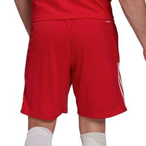 Short adidas Ajax entrenamiento - Pantalón corto entrenamiento adidas Ajax - rojo - trasera