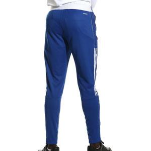 Pantalón adidas Boca Juniors entrenamiento - Pantalón largo de entrenamiento adidas del Boca Juniors - azul - completa trasera