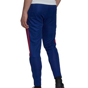 Pantalón adidas Olympique Lyon entrenamiento - Pantalón largo de entrenamiento adidas del Olympique de Lyon - azul marino