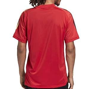 Camiseta adidas Bélgica entreno 2019 2020 - Camiseta de manga corta de entrenamiento selección belga 2019 2020 - roja - trasera