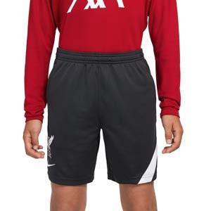 Short Nike Liverpool entrenamiento niño Academy Pro - Pantalón corto infantil entrenamiento Nike del Liverpool FC - gris oscuro
