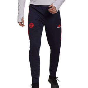 Pantalón adidas Bayern entrenamiento UCL - Pantalón largo de entrenamiento de la Champions League adidas del Bayern de Múnich - azul marino